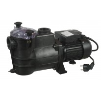 Pompe de Filtration Piscine 950W